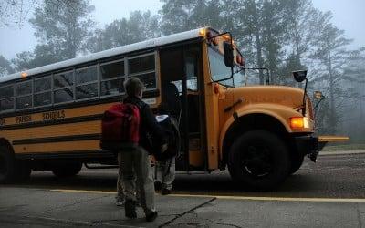 Dzieciaki do szkoły. Raus!!?