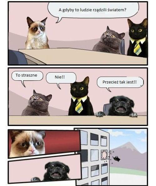 spotkanie-zarzadu1
